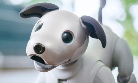 Робот којшто емотивно се поврзува со сопственикот
